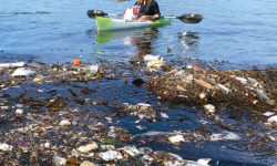 Kayak Cleanup in L.A. Harbor